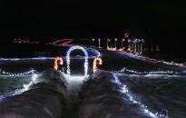 Christmas Lights, lighting up driveway
