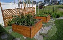 These garden boxes become an attractive landscape feature for this corner of the yard.