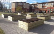 Garden Boxes for the residence at Bethany CollegeSide to grow their own vegetables will being able to move around them comfortably.